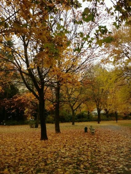 Berlin Herbst Viktoriapark